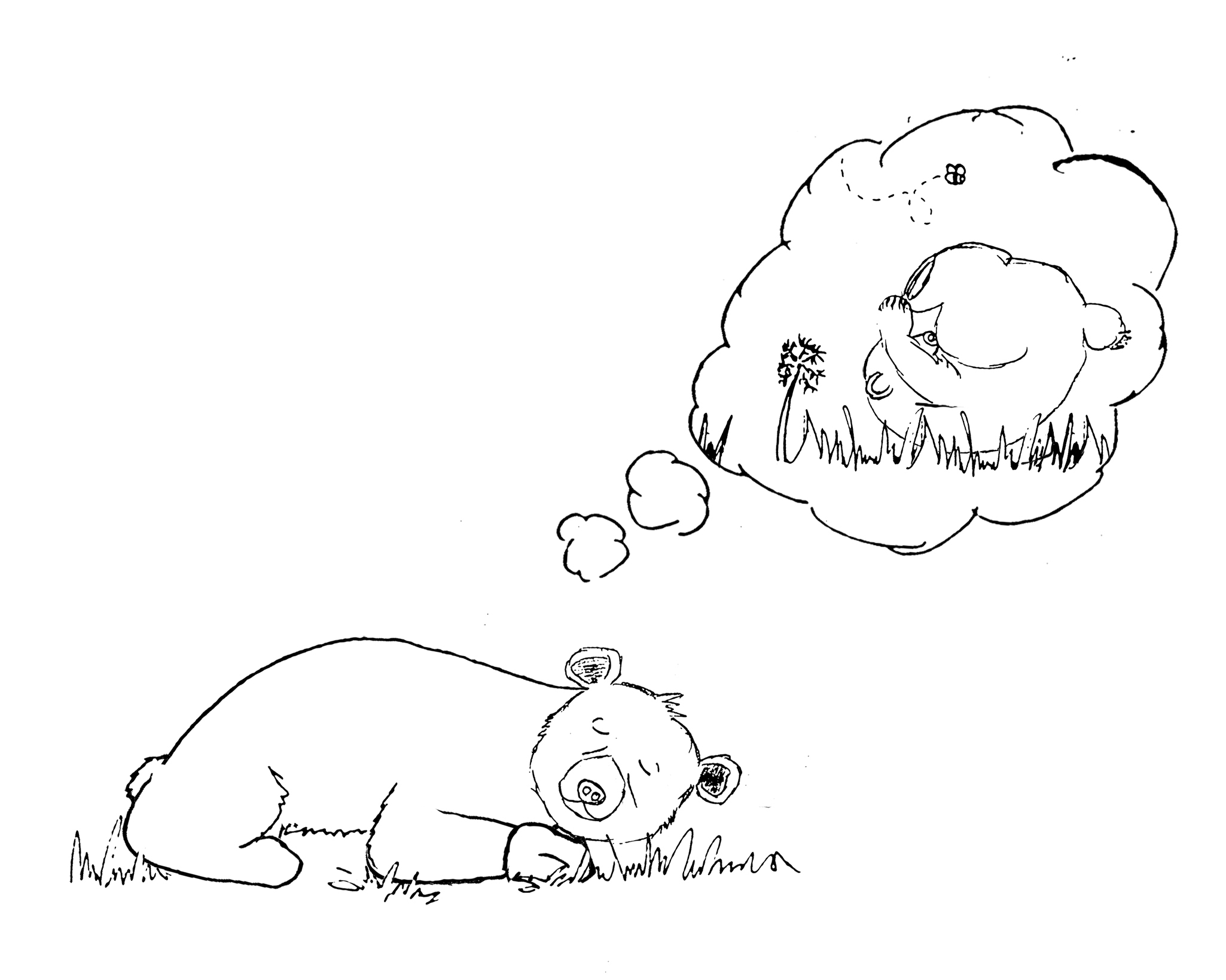 Chapter 7 Buz Has A Dream Coloring Pages Memoirs Of Buz The Bear
