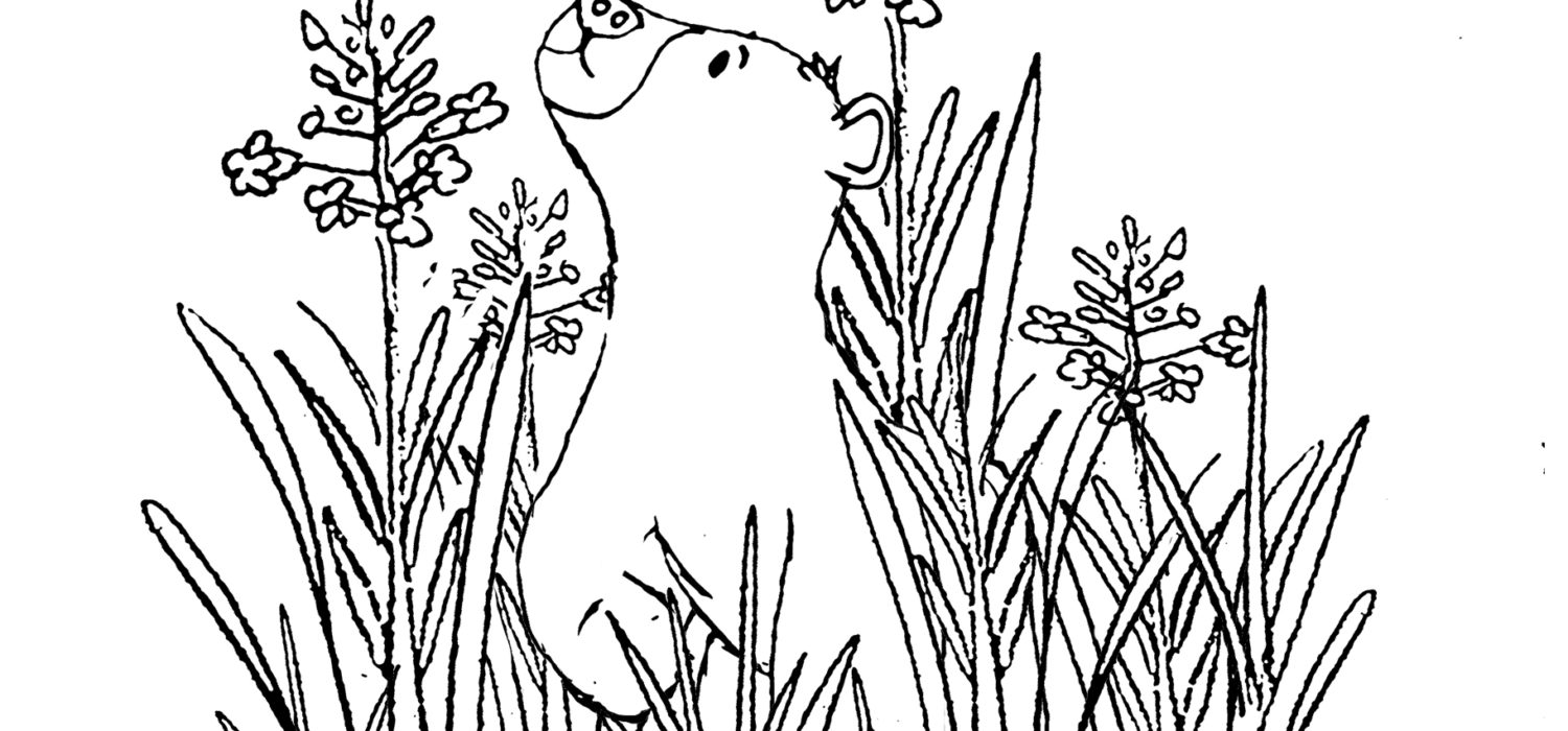Chapter 3 Buz Meets a Cloud Coloring Pages